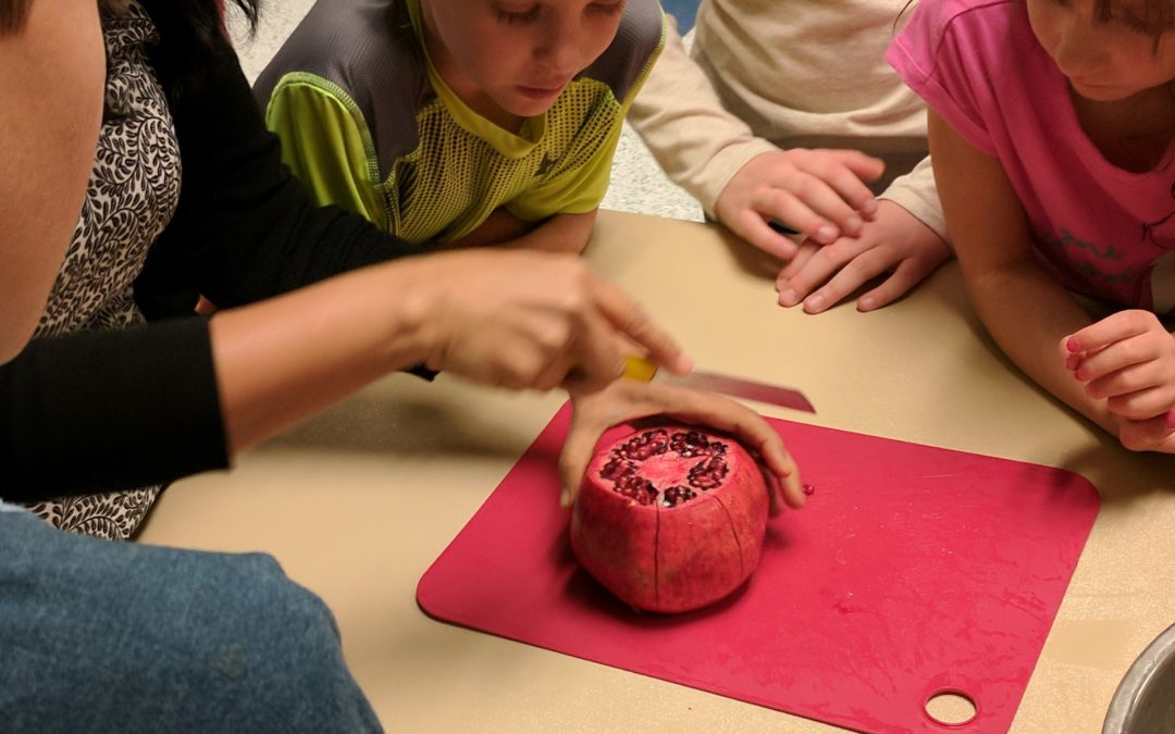 Dec. 7: Cooking Cool Christmas Treats (Youth Cooking)