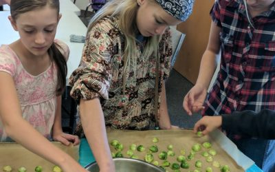 Nov. 04: Youth Cooking – Fun and Festive Sides for Thanksgiving